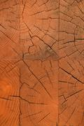 Unpainted wooden wall end texture - stock photo