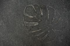 Leaf imprint on cement texture background - stock photo