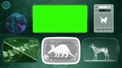 Aardvark - Animal Monitor - Bone scanning - World search - green Stock Footage
