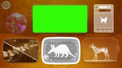 Aardvark - Animal Monitor - Bone scanning - World search - orange Stock Footage