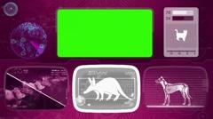 Aardvark - Animal Monitor - Bone scanning - World search - purple Stock Footage