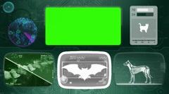 Bat - Animal Monitor - Bone scanning - World search - green Stock Footage