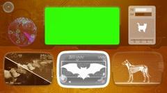 bat - Animal Monitor - Bone scanning - World search - orange - stock footage
