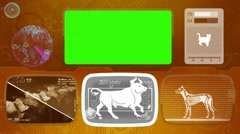 bull - Animal Monitor - Bone scanning - World search - orange - stock footage