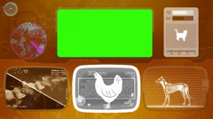 chicken - Animal Monitor - Bone scanning - World search - orange - stock footage