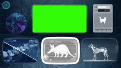 Aardvark - Animal Monitor - Bone scanning - World search - blue Stock Footage