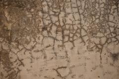 Venetian plaster old light beige wall Stock Photos