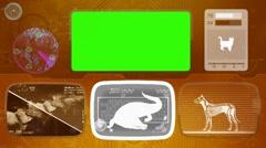 crocodile - Animal Monitor - Bone scanning - World search - orange - stock footage