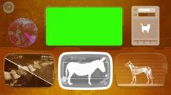 donkey - Animal Monitor - Bone scanning - World search - orange - stock footage