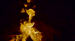 Outdoor wood campfire burring brightly at forest slowmotion Stock Footage