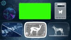 Gazelle - Animal Monitor - Bone scanning - World search - blue Stock Footage