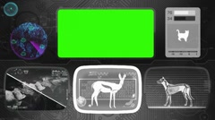 Gazelle - Animal Monitor - Bone scanning - World search - grey Stock Footage