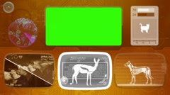 Gazelle - Animal Monitor - Bone scanning - World search - orange Stock Footage