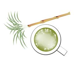 Fresh Sugarcane and Refreshing Sugar Cane Juice - stock illustration
