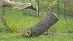 Man kicking down rotten stump - slow motion - stock footage