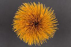 Flower of whole wheat spaghetti - stock photo