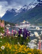 Mountain landscape with cruise ship and pink lupine, norway. Stock Photos