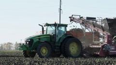 The harvest of sugar beet Stock Footage