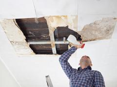Man cleaning mold on ceiling. Stock Photos