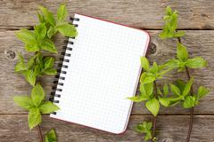 Green plants and blank notebook Stock Photos