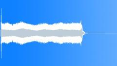Long Car Honk Sound Effect