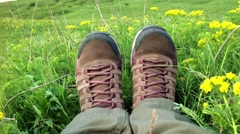 Outdoor purple female hiking shoes in summer grass field Stock Footage