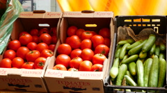 Greece Heraklion tomatoes in boxes Stock Footage