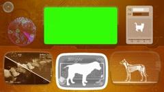 Beagle - bloodhound - brittany  - irish setter - dog - Animal Monitor - orang Stock Footage