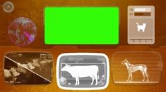 Cow - Animal Monitor - Bone scanning - World search - orange 02 Stock Footage