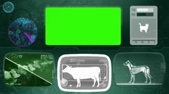 Cow - Animal Monitor - Bone scanning - World search - green 02 Stock Footage