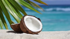 Two halfs of cracked brown coconut on white sandy beach Stock Footage