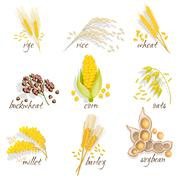 Cereals Icon Set - stock illustration