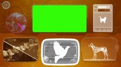 Dove - Animal Monitor - Bone scanning - World search - orange 01 - stock footage