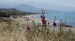 Greece Crete Aegean coast with hollyhocks and beach Stock Footage