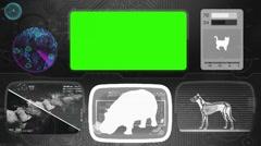 Hippopotamus - Animal Monitor - Bone scanning - World search - grey Stock Footage