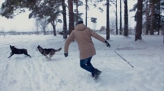 Man trains dogs to bring a stick in a winter forest. Stock Footage