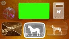 Horse - Animal Monitor - Bone scanning - World search - orange 02 Stock Footage