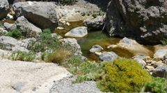 Greece Crete Kourtaliotiko Gorge shrubby plants and stream Stock Footage