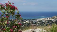 Greece Crete coast framed with oleander Stock Footage