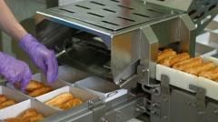 Eclair shells on conveyor belt. Stock Footage