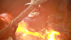 Kettle boiling on the bonfire Stock Footage