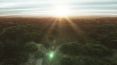fly over forest - stock footage