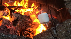 Marshmallow cooking at camp fire Stock Footage