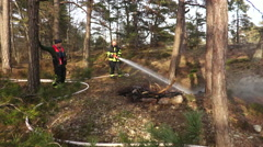 Firefighters extinguish a fire in the ground on an island Stock Footage