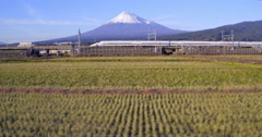 Shinkansen Bullet Train passing fields and Mount Fuji, Honshu, Japan Stock Footage