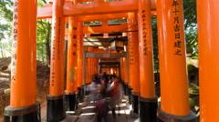Vermilion Torii gates of Fushimi Inari Shrine, Kyoto, Kansai Prefecture, Japan Stock Footage