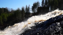 Forest waterfall tilt up and down Stock Footage