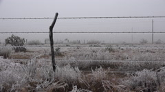 Texas landscape with ice on fence Stock Footage