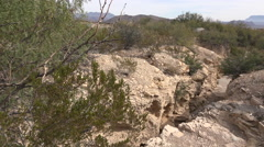 Texas Terlingua gully pans from shrub Stock Footage