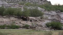 Texas Big Bend Mexican vendors at Boquillas canyon Stock Footage